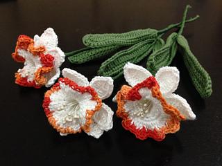 Daffodil_bouquet_small2