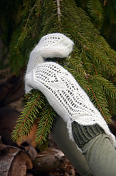 Lacegloves4_small_best_fit