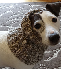 Snood Dog Knitting Pattern Wool And The Gang : Ravelry: Dog Snood or Neck Warmer pattern by Jacqueline Gibb