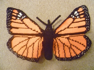 Monarch_big_2_small2