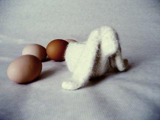 Bunny_lop_copy_small2