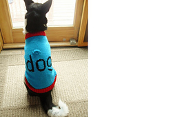 Luna_dog_sweater_11-10__3__small_best_fit