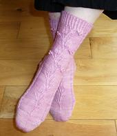 Montana_socks2_small_best_fit