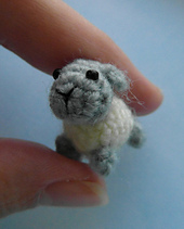 Sheep1_small_best_fit