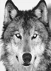 Husky250x348_klein_small