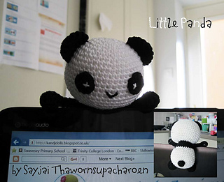 Img_5815-panda-on-laptop_small2