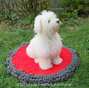 Coton-on-a-doggy-pad_small_best_fit