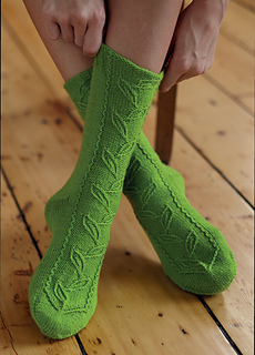 Foliatum_socks_small2