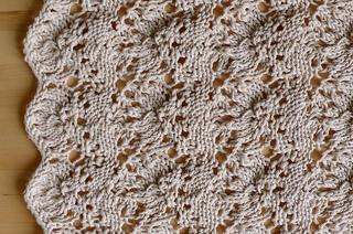 Porcupine_close_up_small2