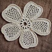 Dsc_0051_flower_on_brown_small_best_fit