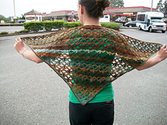 Crazy_ball_shawl_4_small
