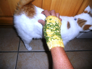 Bee_mitts_009_small2