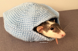 Lianainstitches_crochet_smallpetburrow_pattern_4_optimized_small_best_fit