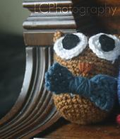 Owlbowtie_small_best_fit