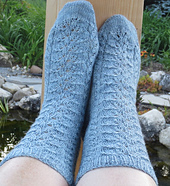 Picea_socks2_small_best_fit