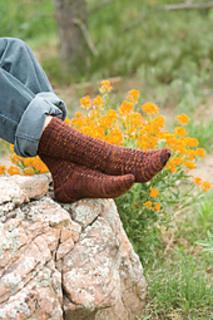 Copper_penny_socks_nancy_bush_small2