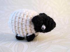 Sheep_01_small