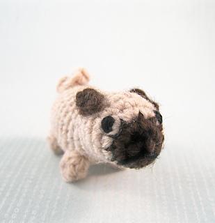 Pug_03_small2