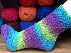 Socke-rosetta_small