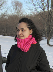 Electric_reversible_shaker_cowl_pic1_small