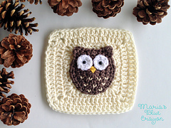 Owl_square_copy_small