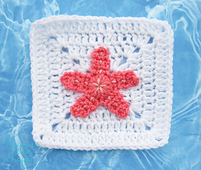 Starfish_small_best_fit