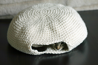 Cat_oven_3_small2