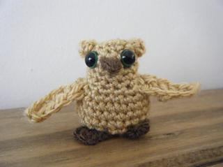 Owl3_small2