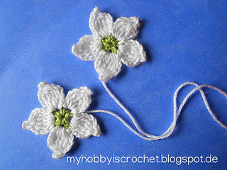Blackberry_flowers-blog_small2