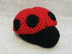 Ladybug_5_small