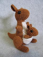 Kangaroo_1_small