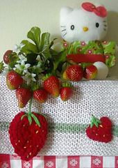 Strawberries_small_best_fit