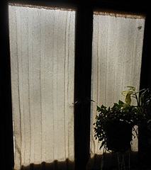 Curtains_small