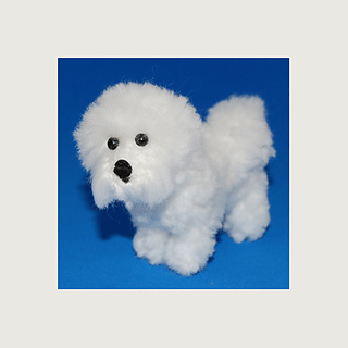 Bichon5_small2