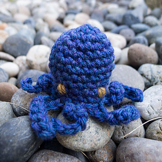 Cephalopods-2_small2