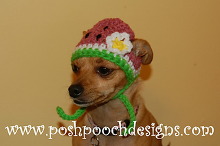 68d802de642 Ravelry  Watermelon Dog Hat pattern by Sara Sach