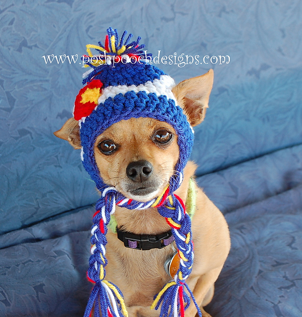 Hat For Dog. 31 cool dog hats for dogs of all shapes and sizes ... 925a5c031e51