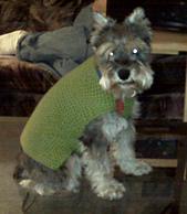 Obi_sweater_medium2__1__small_best_fit