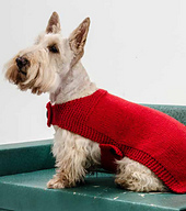 Dogsweater_small_best_fit