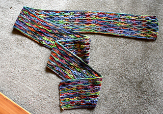 Bright_lizard_scarf_06-17-14_small2