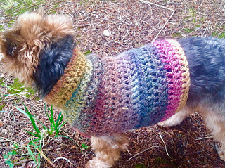 Ravelry Simple Small Dog Sweater Pattern By Raelynn Endicott