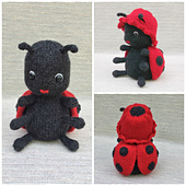Ladybug_2_small_best_fit