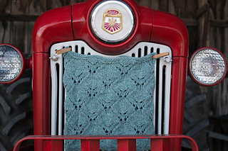 Tractor_grill_img_2941_small2