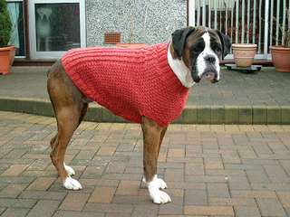Ravelry Cables And Hearts Dog Coat Pattern By Patons