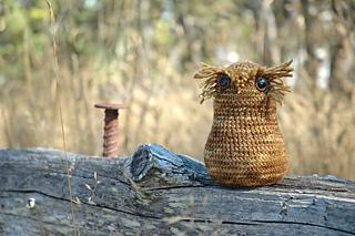 Owl_1_small2