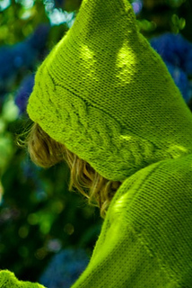 Hoodie_sm_small2
