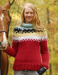 Holyokesweaterlg_small