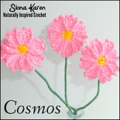 Cosmos_square_small_best_fit