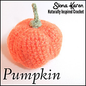 Pumpkin_square___cover_small_best_fit