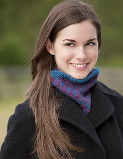 3731-gameday_cowl_small2